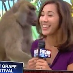 Thumbnail image for News Blooper of the Year: Sabrina Rodriguez, baboon friend (video)