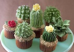 Thumbnail image for Our quest for photos of cactus cakes and cupcakes
