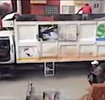 Thumbnail image for Mexican garbage men perfect low-impact trash collection (video)