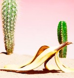 Thumbnail image for He's been to the desert on a banana with one name: Bonito (video)