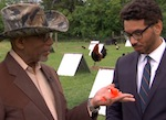 Thumbnail image for Al Madrigal ruffles feathers in 'Chicken Boxing' exposé (video)
