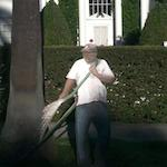 Thumbnail image for In Beverly Hills, a cardboard gardener 'represents' (photos, video)